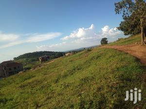 Kira Kimwanyi Beautiful Plot for Sell   Land & Plots For Sale for sale in Kampala