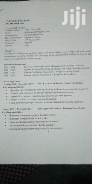 Accounting & Finance CV   Accounting & Finance CVs for sale in Kampala