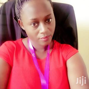 Account Assistant   Accounting & Finance CVs for sale in Kampala