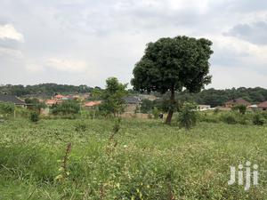 Kira Beautiful Plot Near the Main Road on Quick Sale   Land & Plots For Sale for sale in Kampala