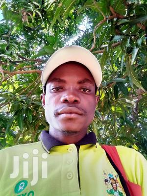 Security Guides And Drivers | Computing & IT CVs for sale in Nothern Region, Arua