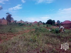 Hot Deal Plot Of Land For Quick Sale In Bukerere | Land & Plots For Sale for sale in Mukono