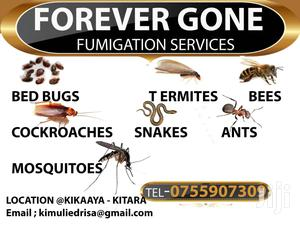 FUMIGATION SERVICES/Spraying | Cleaning Services for sale in Kampala