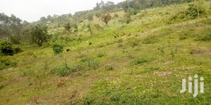 5acres of Land for Sale Located in Mukono-Katosi Road | Land & Plots For Sale for sale in Mukono