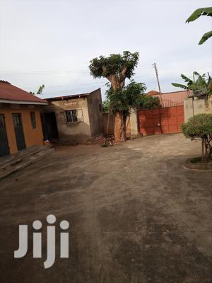 Muyenga Studio Room With Bathroom Only   Houses & Apartments For Rent for sale in Kampala