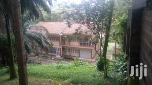 4 Bedroom Villa In Kololo For Rent   Houses & Apartments For Rent for sale in Kampala