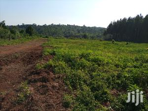 Land for Sale Mukono Kyetume on Katosi Road | Land & Plots For Sale for sale in Mukono
