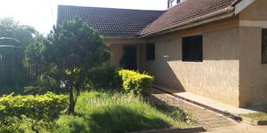 4bedroom House Is Available for Rent in Bukoto   Houses & Apartments For Rent for sale in Kampala