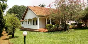 House Is Available for Rent in Kololo   Houses & Apartments For Rent for sale in Kampala
