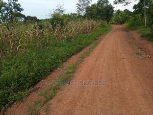 Two Acre of Land for Sale at Mukono-Nakisunga Katosi-Road | Land & Plots For Sale for sale in Mukono