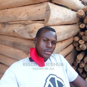 Driver CV   Driver CVs for sale in Kampala