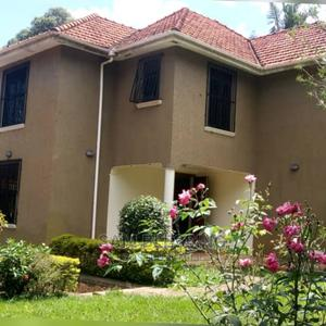 Flat House For Rent In Heart Of Kololo   Houses & Apartments For Rent for sale in Kampala