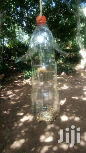 Fruit Fly Traps | Home Accessories for sale in Kampala