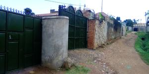 3bdrm Bungalow in Lb Property, Kampala for Rent | Houses & Apartments For Rent for sale in Kampala
