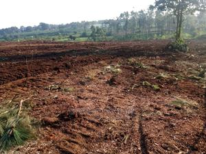 Only 2m and Buy a Plot | Land & Plots For Sale for sale in Mukono