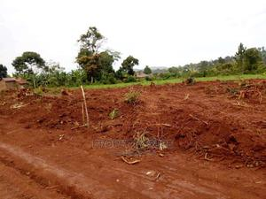 Estate New Land for Sale in Busiika | Land & Plots For Sale for sale in Kampala