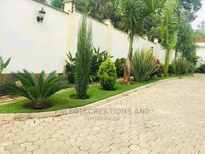 Driveway Side Belt Garden Design Makes Compound Beautiful   Landscaping & Gardening Services for sale in Kampala
