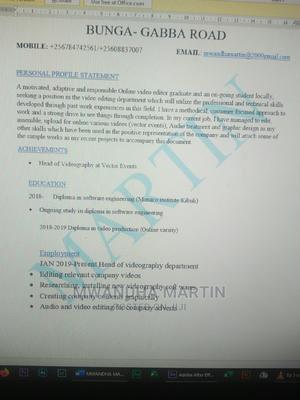 Video Editor | Arts & Entertainment CVs for sale in Kampala