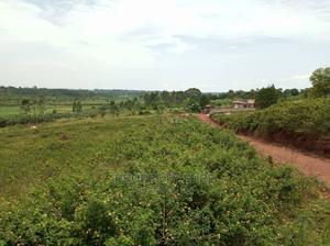 Good Estate Land for Sale in Kira Nakasajja | Land & Plots For Sale for sale in Wakiso, Wakiso / Wakiso
