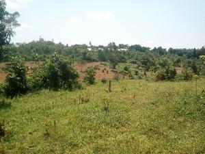 Land for Rent at 270000 Per Annum in Kayunga   Land & Plots for Rent for sale in Kayunga, Kayunga TC