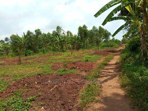 Good Estate Land for Sale in Busiika Town | Land & Plots For Sale for sale in Wakiso, Wakiso / Wakiso