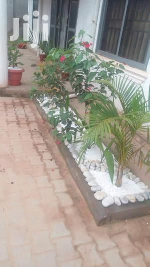 Decorative Garden Stones | Garden for sale in Kampala