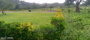 Land for Sale 1acher Hoima Town in Katasiha   Land & Plots for Rent for sale in Western Region, Hoima